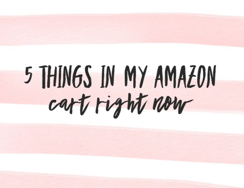 5 things in my Amazon cart RIGHT NOW